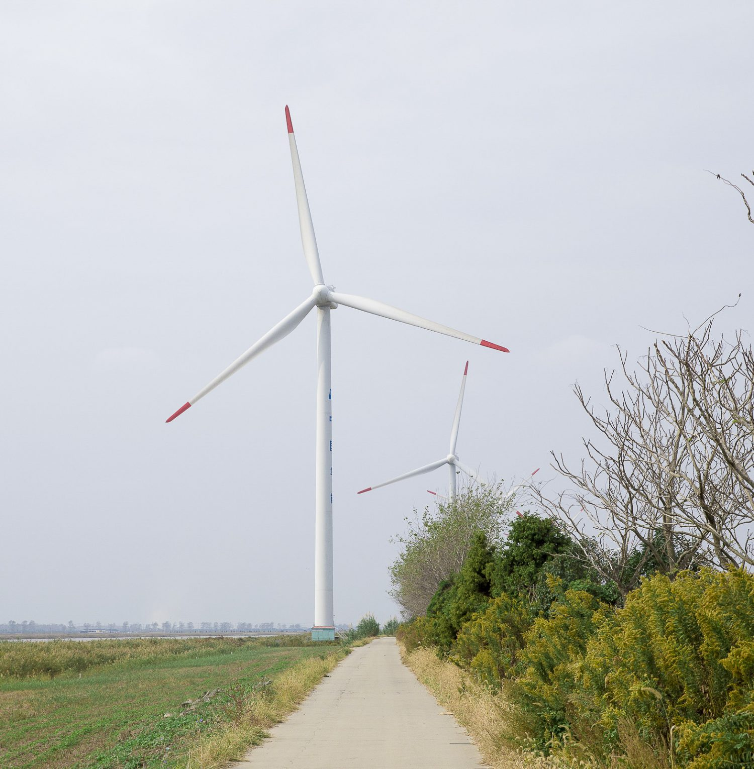 When it comes to wind power, lubricants make a big difference