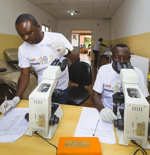 Three experts on 20 years of fighting malaria